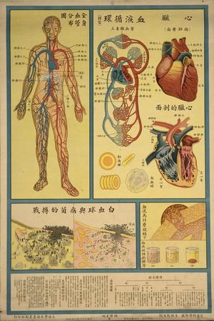 https://imgc.allpostersimages.com/img/posters/blood-circulation-and-coagulation_u-L-PWB8A00.jpg?artPerspective=n