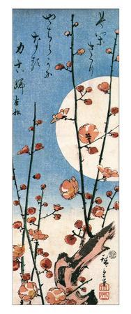 https://imgc.allpostersimages.com/img/posters/blossoming-plum-tree-with-full-moon_u-L-F4EQGA0.jpg?p=0
