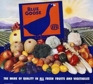 Blue Goose Poster