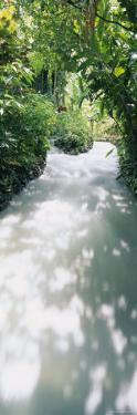 Blue Hole Gardens River, Negril, Jamaica