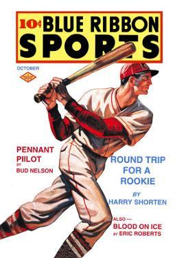 Blue Ribbon Sports: Round Trip for a Rookie