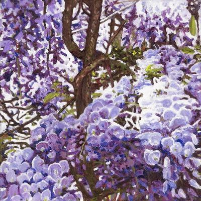 https://imgc.allpostersimages.com/img/posters/blue-wisteria-2011_u-L-Q1GTWS20.jpg?artPerspective=n