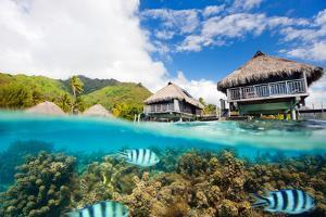 Beautiful above and Underwater Landscape of Moorea Island in French Polynesia by BlueOrange Studio