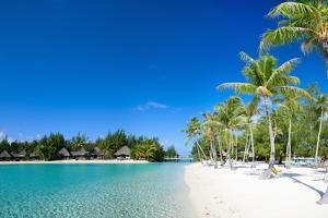 Beautiful Beach on Bora Bora Island in French Polynesia by BlueOrange Studio