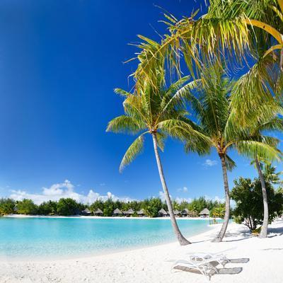 Beautiful Beach with Coconut Palms on Bora Bora Island in French Polynesia