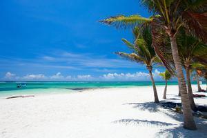 Beautiful White Sand Beach in Akumal Mexico by BlueOrange Studio