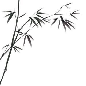 Chinese Painting Of Bamboo by bluesee