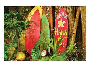 Board in Maui