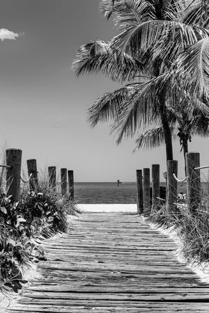 https://imgc.allpostersimages.com/img/posters/boardwalk-on-the-beach-key-west-florida_u-L-PZ4ZXP0.jpg?p=0