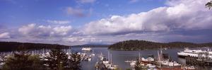 Boats at a Harbor, Friday Harbor, San Juan County, Washington State, USA