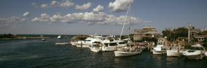 Boats at a Harbor, Martha's Vineyard, Dukes County, Massachusetts, USA