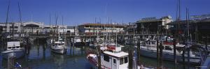 Boats Docked at a Harbor, Fisherman's Wharf, San Francisco, California, USA