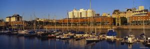 Boats Docked at a Harbor, Puerto Madero, Buenos Aires, Argentina