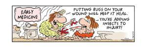 Frank & Ernest - Early Medicine.  Putting bugs on your wound will help it heal.  You're adding inse by Bob and Tom Thaves