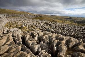 Limestone Pavement, Yorkshire by Bob Gibbons