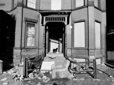Slums in Bedford Stuyvesant
