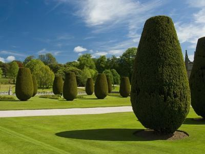 Gardens on  the Estate of Lanhydrock by Bob Krist