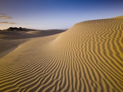 Sand Dunes of Isla Magdalena by Bob Krist