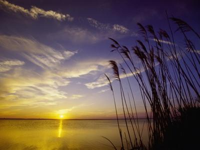 Sunset on the Barnegat Bay and Sea Oats by Bob Krist