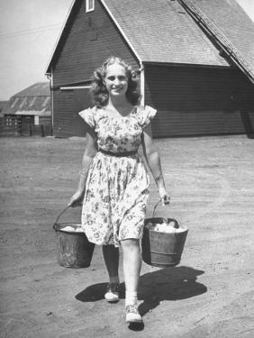 Francis Larson Collecting Eggs on Her Farm by Bob Landry
