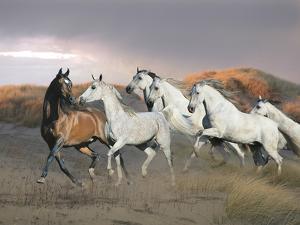 Dream Horses 043 by Bob Langrish