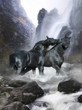 Dream Horses 065 by Bob Langrish