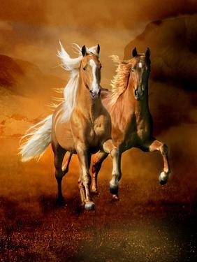 Dream Horses 075 by Bob Langrish