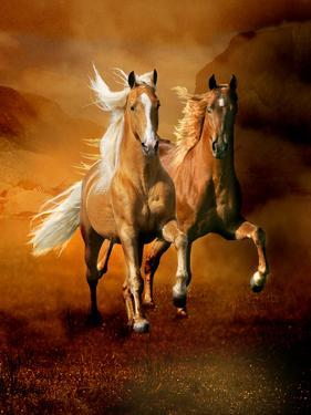 Dream Horses 075 by Bob Langrish