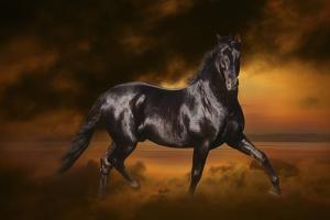 Fantasy Horses 33 by Bob Langrish