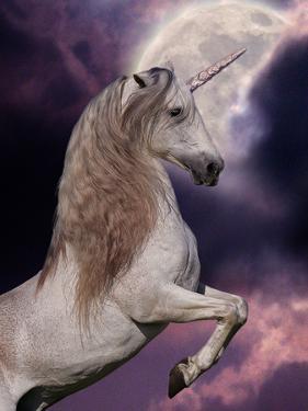 Unicorn 60 by Bob Langrish