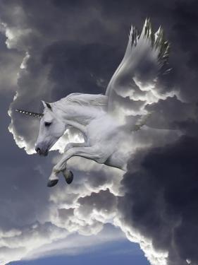 Unicorn 62 by Bob Langrish