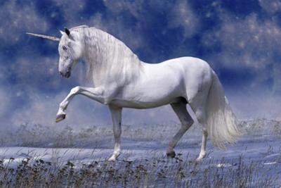 Unicorn 80 by Bob Langrish