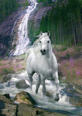 Bob Langrish Waterfall