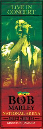 Bob Marley Concert Kingston Jamaica Music Door Poster