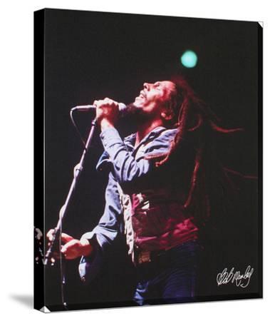 Bob Marley: Live In Concert