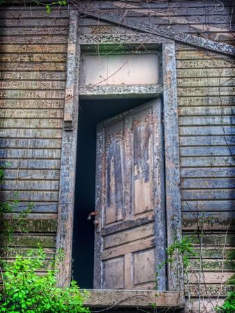 Back Door by Bob Rouse