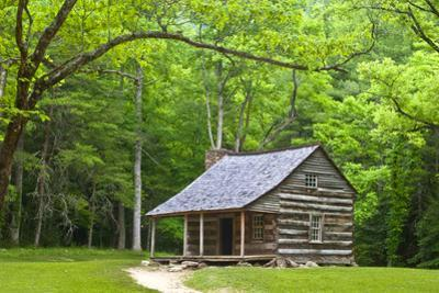 Carter Shields Cabin by Bob Rouse