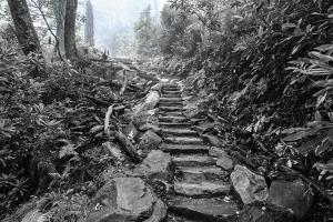 Chimney Tops Steps BW by Bob Rouse