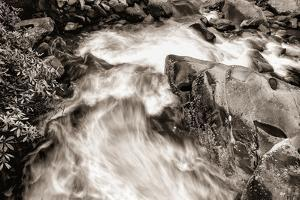 Little Pigeon River BW by Bob Rouse