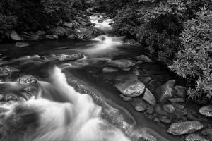 little pigeon river2BW by Bob Rouse
