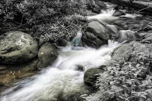 Roaring Fork 2 BW by Bob Rouse