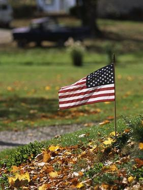 Small American Flag Posted in Yard by Bob Rowan
