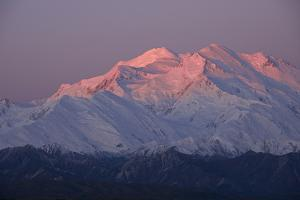 Snow-Blanketed Mount Mckinley Glowing Pink at Twilight by Bob Smith