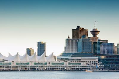 From Stanley Park IV by Bob Stefko