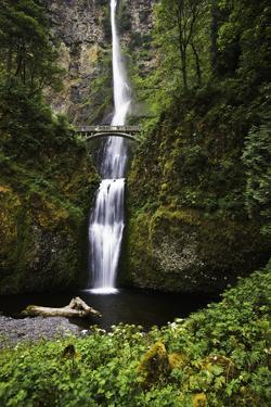 Multnomah Falls II by Bob Stefko