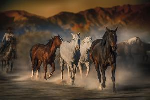 Mustangs on the Move by Bobbie Goodrich