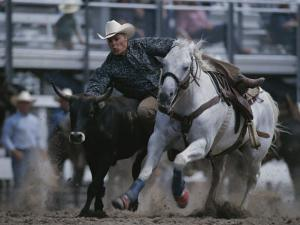 A Cowboy Drops off His Horse to Wrestle a Steer by Bobby Model