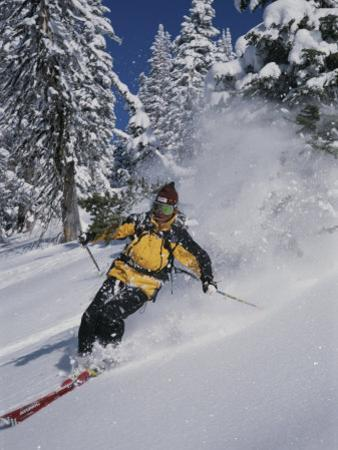 A Skier Cuts Through Some Untouched Powder in Montana