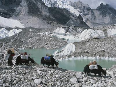 Yak Herders Cross a High Pass Near Mount Everest, Nepal