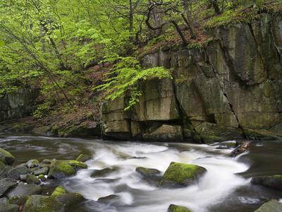 https://imgc.allpostersimages.com/img/posters/bode-in-the-spring-harz-national-park-saxony-anhalt-germany_u-L-Q1EY0NJ0.jpg?artPerspective=n